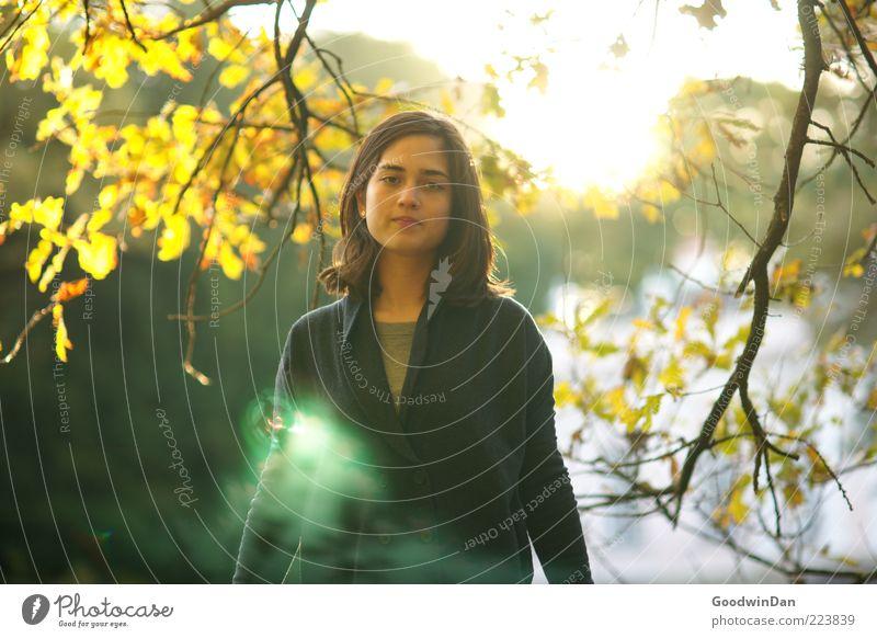 Grün Frau Mensch Natur Jugendliche schön Sonne feminin Herbst Gefühle Umwelt Stimmung Wärme Erwachsene Wetter warten stehen