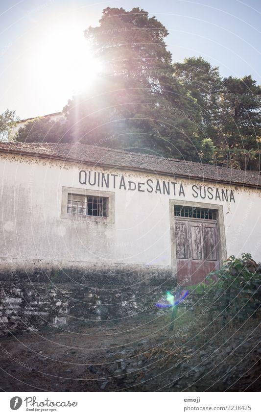 Quinta de Santa Susana alt Sommer Haus Wand Mauer Fassade Armut Dorf Hütte Urlaubsfoto Weingut