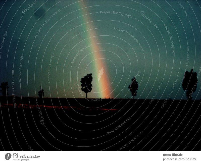 somewhere.... Regenbogen Wetter Unwetter Hoffnung Glaube dramatisch Dramatik Kitsch Natur April Baum Silhouette regenbogenfarben Naturphänomene