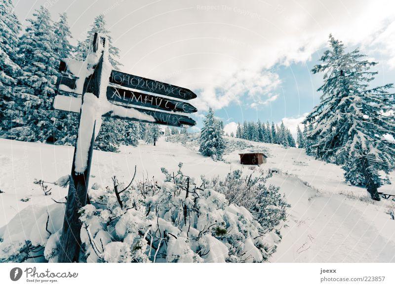 Zur Almhütte Himmel Natur weiß Baum blau Ferien & Urlaub & Reisen Winter Wolken ruhig Wald kalt Schnee Berge u. Gebirge Landschaft Wege & Pfade Wetter