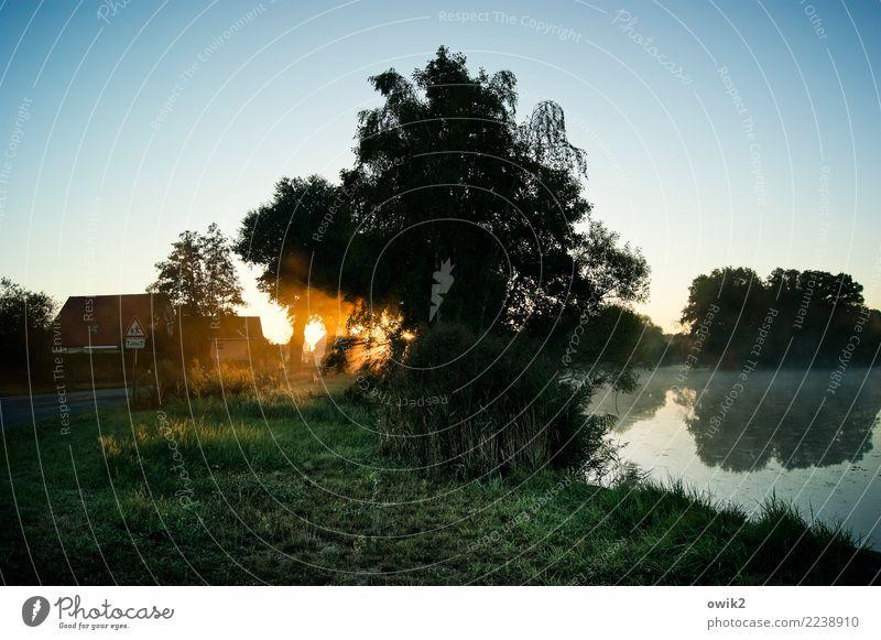 Epiphanie Umwelt Natur Landschaft Pflanze Luft Wasser Wolkenloser Himmel Horizont Schönes Wetter Baum Gras Sträucher Teich Dorfteich Haus leuchten Gelassenheit