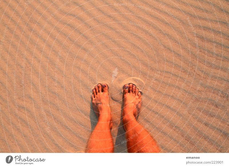 stehen geblieben Mensch Natur Sommer Strand Ferien & Urlaub & Reisen Erholung Freiheit Sand Fuß Wärme Zufriedenheit warten Freizeit & Hobby Tourismus maskulin