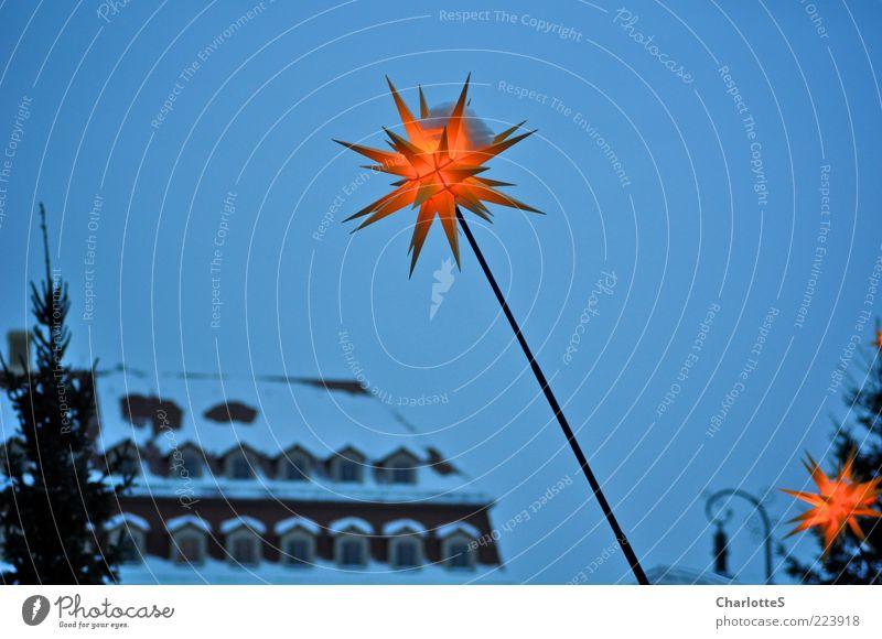 Sahnehäubchen Himmel Weihnachten & Advent blau schön Winter gelb Schnee Beleuchtung gold glänzend hoch Dach leuchten Warmherzigkeit Kitsch Dresden