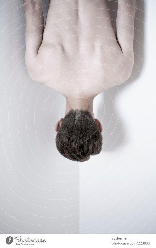 Geometrie/ Anatomie Mensch Jugendliche schön ruhig Leben kalt nackt Haare & Frisuren träumen Körper Haut Rücken maskulin ästhetisch geheimnisvoll skurril