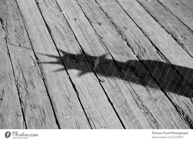 Statue of Liberty Freiheit Architektur USA Denkmal Bauwerk Amerika Wahrzeichen Holzbrett New York City Sehenswürdigkeit graphisch Originalität Holzfußboden