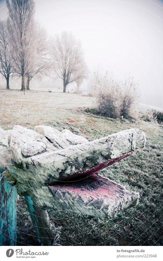 Eismonster Natur Baum grün Pflanze Winter kalt Wiese Landschaft Umwelt Park Nebel Tiergesicht Spielzeug Urelemente Spielplatz Schnauze
