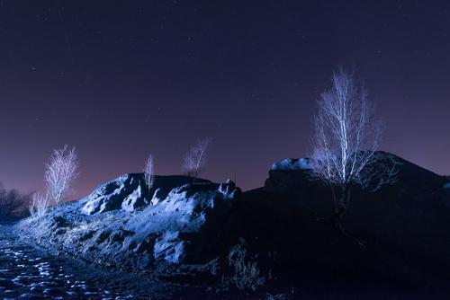 Nacht Wüsten Landschaft Natur Pflanze blau weiß Baum Winter dunkel schwarz Umwelt grau Sand Felsen Eis Erde dreckig