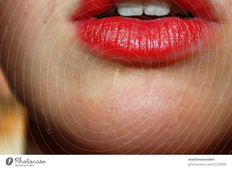 rote lippen soll man küssen schön Haut Lippenstift feminin Junge Frau Jugendliche Erwachsene Mund Zähne 1 Mensch sprechen weiß Romantik Lust Kinn glänzend