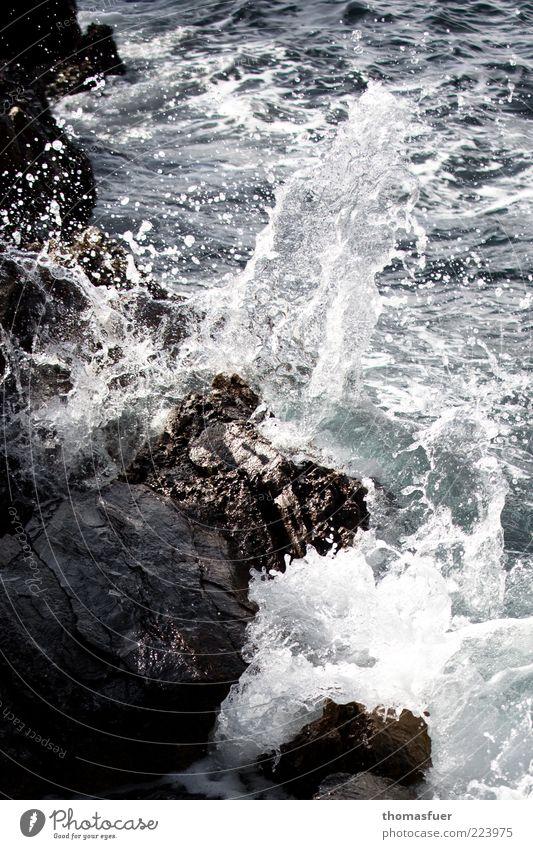 Squall Ferien & Urlaub & Reisen Sommer Meer Wellen Wasser Wassertropfen Schönes Wetter Wind Felsen Küste Bucht Stein nass chaotisch Brandung Felsküste Farbfoto