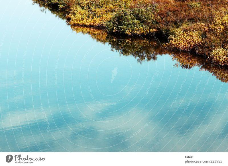 Ufer Himmel Natur Wasser blau Pflanze ruhig Umwelt See Ecke Sträucher Seeufer Moos Wasseroberfläche Wasserspiegelung