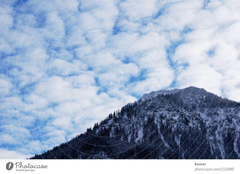 Berg und Wolken Umwelt Natur Landschaft Pflanze Himmel Winter Eis Frost Schnee Baum Wildpflanze Hügel Felsen Alpen Berge u. Gebirge Gipfel kalt Winterlicht Wald