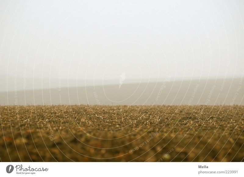 Land Himmel Natur Ferne Landschaft grau Umwelt braun Erde Feld Nebel Klima natürlich Landwirtschaft Forstwirtschaft Endzeitstimmung