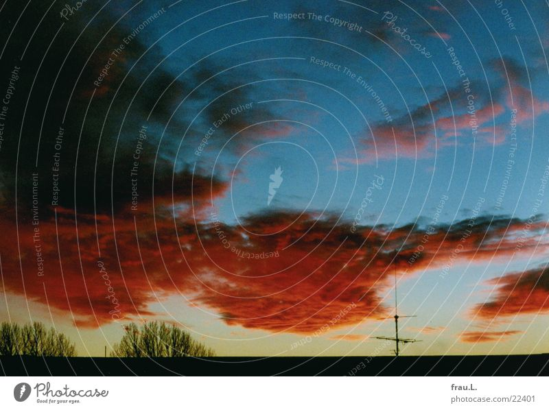 Winter-Sonnuntergang Himmel Baum rot Wolken Dach dramatisch