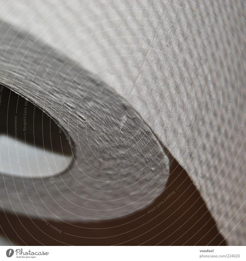 Rollenspiel Toilettenpapier grau schwarz trist rund Recycling Blatt Wabenmuster Schwarzweißfoto Innenaufnahme Menschenleer Textfreiraum rechts Textfreiraum oben