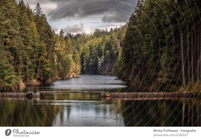 Alte Talsperre Tambach - Dietharz / Thüringen Ferien & Urlaub & Reisen Tourismus Ausflug Sommer Sonne Natur Landschaft Pflanze Wasser Himmel Wolken Sonnenlicht