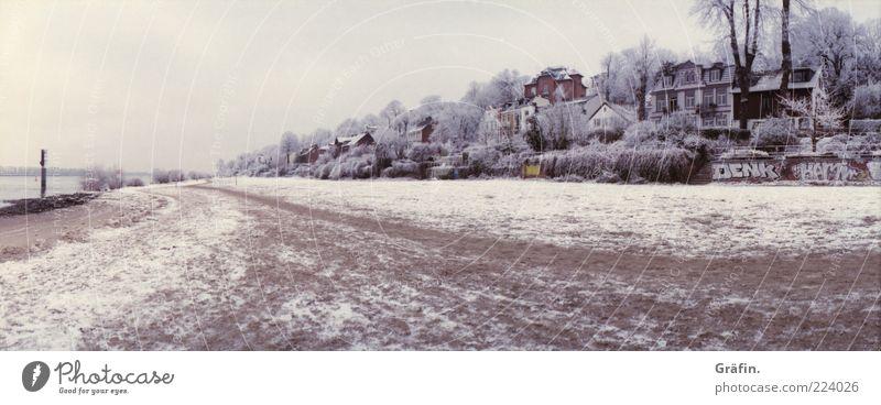Eiszeit Strand Winter Schnee Haus Sand Himmel Wolken schlechtes Wetter Frost Baum Flussufer Elbe Wege & Pfade kalt braun grau Einsamkeit stagnierend Elbstrand