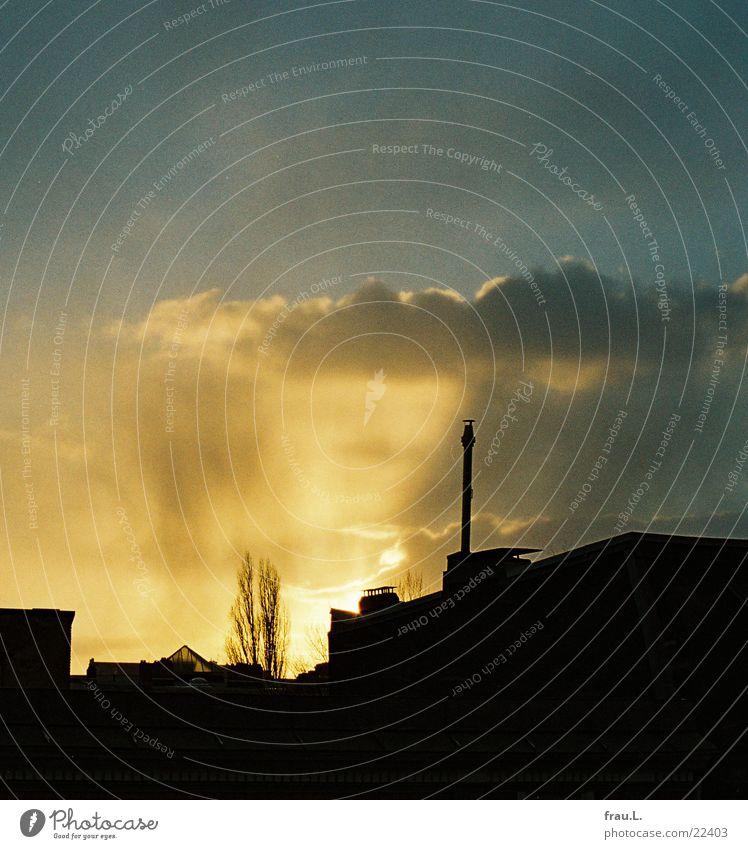 Winter-Himmel Pappeln Dach Wolken Gegenlicht Haus dunkel Sonne Abend Schornstein hell Lampe