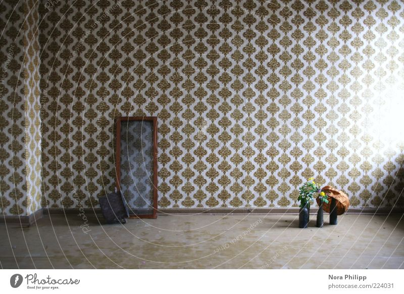 room of cravings Pflanze Blume ruhig Fenster braun Raum Wohnung Ordnung leer retro Dekoration & Verzierung Tapete Stillleben Nostalgie Topf Unbewohnt