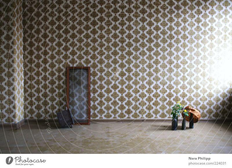room of cravings Topf Wohnung Dekoration & Verzierung Tapete Raum Pflanze Blume Fenster retro braun ruhig Nostalgie Ordnung Innenaufnahme Menschenleer
