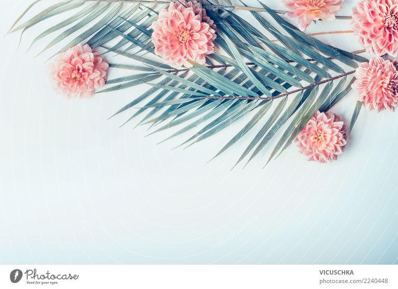 Palmenblätter und tropische Blumen Natur Ferien & Urlaub & Reisen Sommer blau Pflanze Blatt Hintergrundbild Blüte Stil rosa Design Freizeit & Hobby