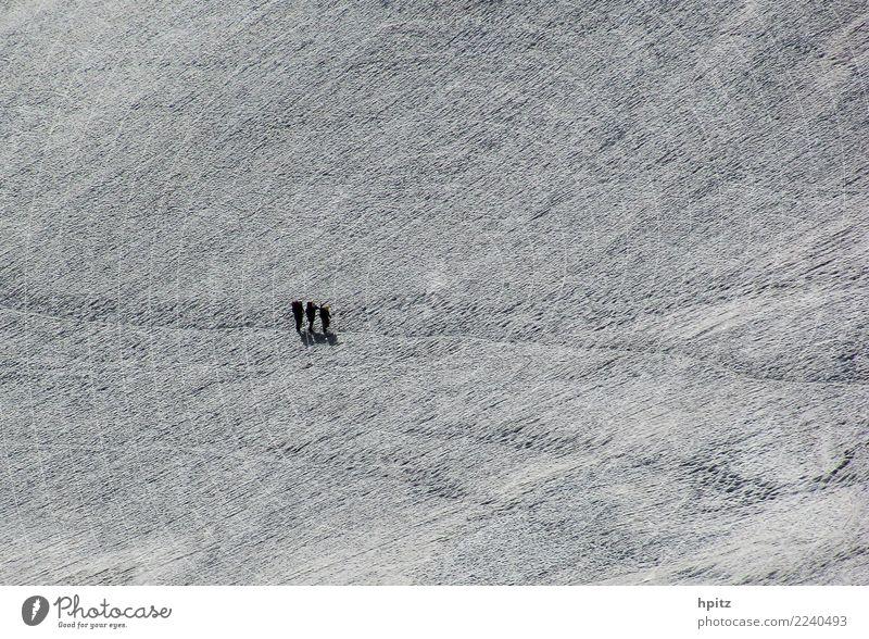 Alleine in weiß Landschaft Urelemente Winter Eis Frost Schnee Berge u. Gebirge Gletscher Fußspur Zusammensein kalt Tatkraft Leidenschaft schön Solidarität