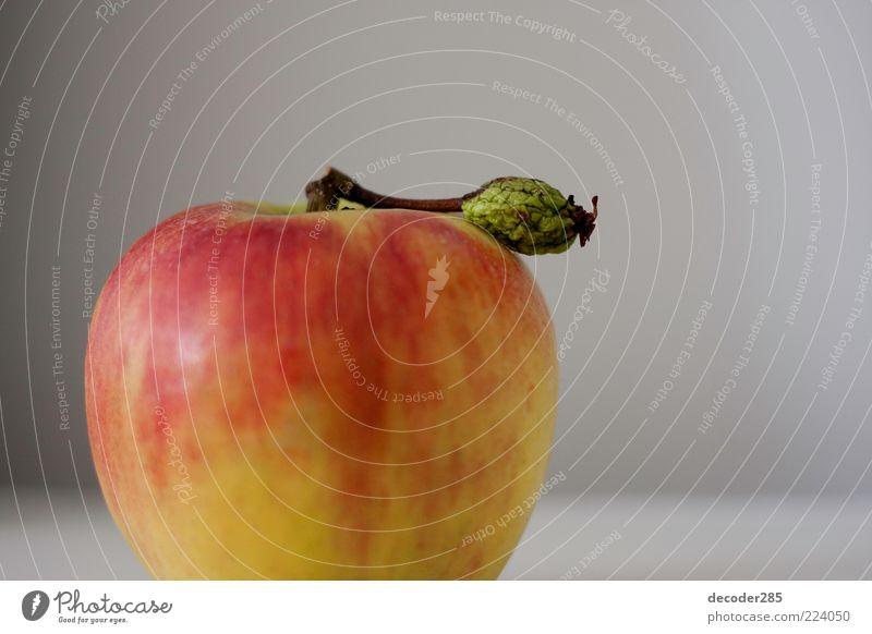 Apfel mit Blatt Lebensmittel Vegetarische Ernährung Pflanze Nutzpflanze Farbfoto Innenaufnahme Studioaufnahme Menschenleer Textfreiraum rechts