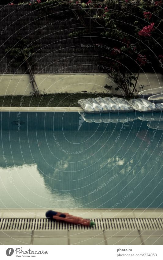 Pool Erholung ruhig Sommer Sommerurlaub Farbfoto Außenaufnahme Textfreiraum oben Tag Im Wasser treiben Schwimmbad Wasserbecken Luftmatratze Beckenrand
