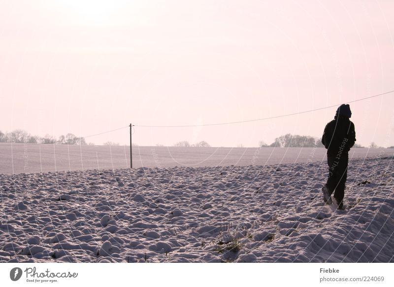 Winterwetter Kind 1 Mensch Natur Landschaft Himmel Schönes Wetter Schnee Feld violett kalt Spaziergang Mantel Ferne hell Farbfoto Außenaufnahme