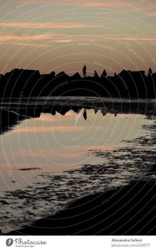 Sonnenuntergang Venice Beach Mensch Himmel Natur Wasser Sommer Leben Freiheit Landschaft Umwelt Stimmung Küste Wetter Horizont Klima beobachten Schönes Wetter