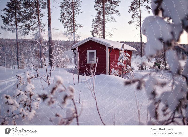 Zeit für Winterstimmung Ferien & Urlaub & Reisen Tourismus Ausflug Abenteuer Ferne Expedition Schnee Winterurlaub wandern Haus Traumhaus 1 Mensch Umwelt