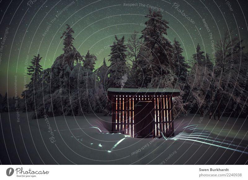 Ein wenig mehr Begeisterung wäre nicht verkehrt Himmel Natur Ferien & Urlaub & Reisen Pflanze grün Landschaft Haus Winter Wald Umwelt Frühling Schnee Kunst
