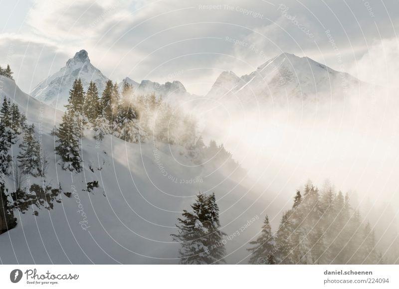 ... oder so ???? Natur Wolken Winter Schnee Berge u. Gebirge Landschaft Umwelt hell Eis Nebel Klima Frost Alpen Gipfel Tanne Winterurlaub