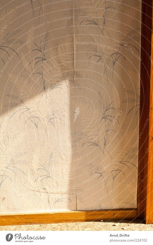 Tapete alt Wand Holz Mauer Hintergrundbild kaputt trist Anschnitt Bildausschnitt Lichteinfall Holzleiste Tapetenmuster
