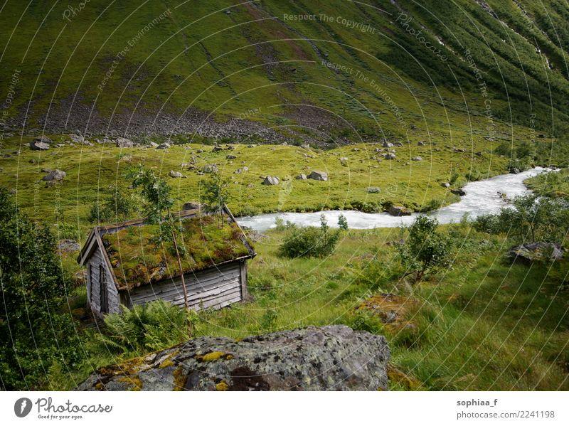 Einsames moosbewachsenes Holzhäuschen in idyllischer grüner Landschaft Cottage Moos Tal Hütte bedeckt Wiese Fluss Berge Gras hölzern Haus Island alt moosbedeckt