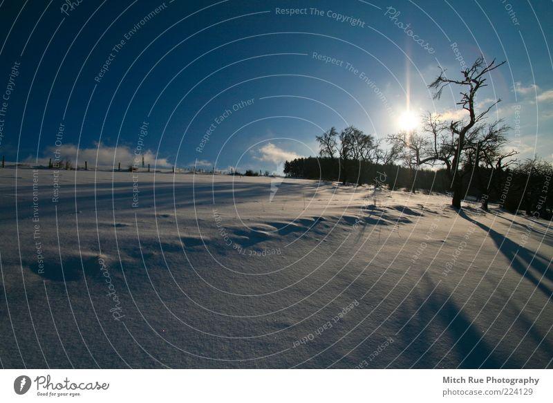 SNOW! Sonne Winter Schnee Winterurlaub Natur Landschaft Pflanze Horizont Wetter Schönes Wetter Eis Frost Baum Herschweiler-pettersheim Deutschland Europa Dorf