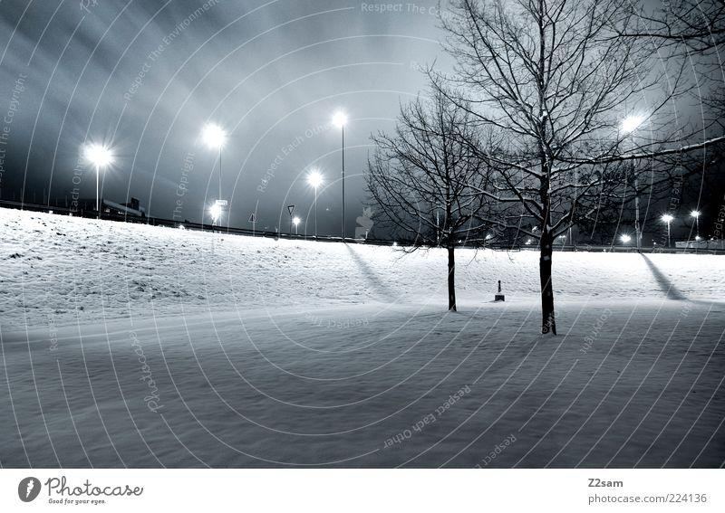 energiesparer blau Stadt Baum Winter dunkel kalt Schnee Stil Park Ordnung Energie modern ästhetisch Sauberkeit Laterne Straßenbeleuchtung