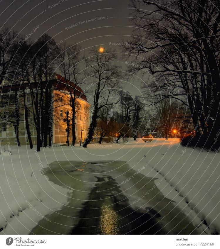 nächtlich Wasser weiß Baum Winter dunkel Schnee Park braun Eis Frost Burg oder Schloss Mond Nachthimmel Wolkenloser Himmel Reflexion & Spiegelung Vollmond