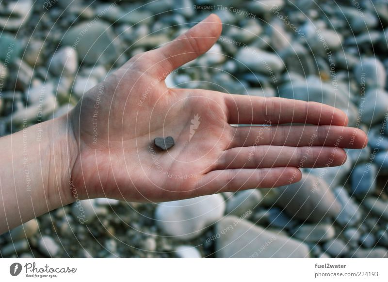 Your heart in my hand Hand Liebe Stein Herz Finger ästhetisch Sicherheit Romantik Vertrauen Geborgenheit Verliebtheit Sympathie Kieselsteine steinig Einigkeit Mensch