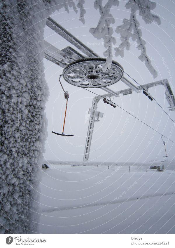 Freizeittechnik Winter Schnee Winterurlaub Wintersport Bewegung Freizeit & Hobby Sport Skilift Schlepplift Technik & Technologie kalt Schneelandschaft Baum