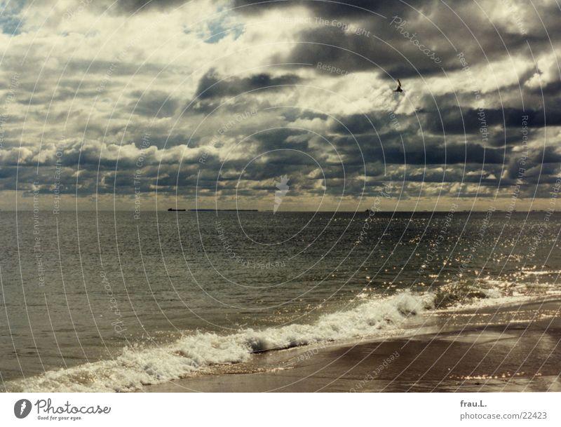 Skagen Strand Meer Sommer dramatisch Wolken Wellen Küste Regenwolken Nordsee Dänemark Sand möve