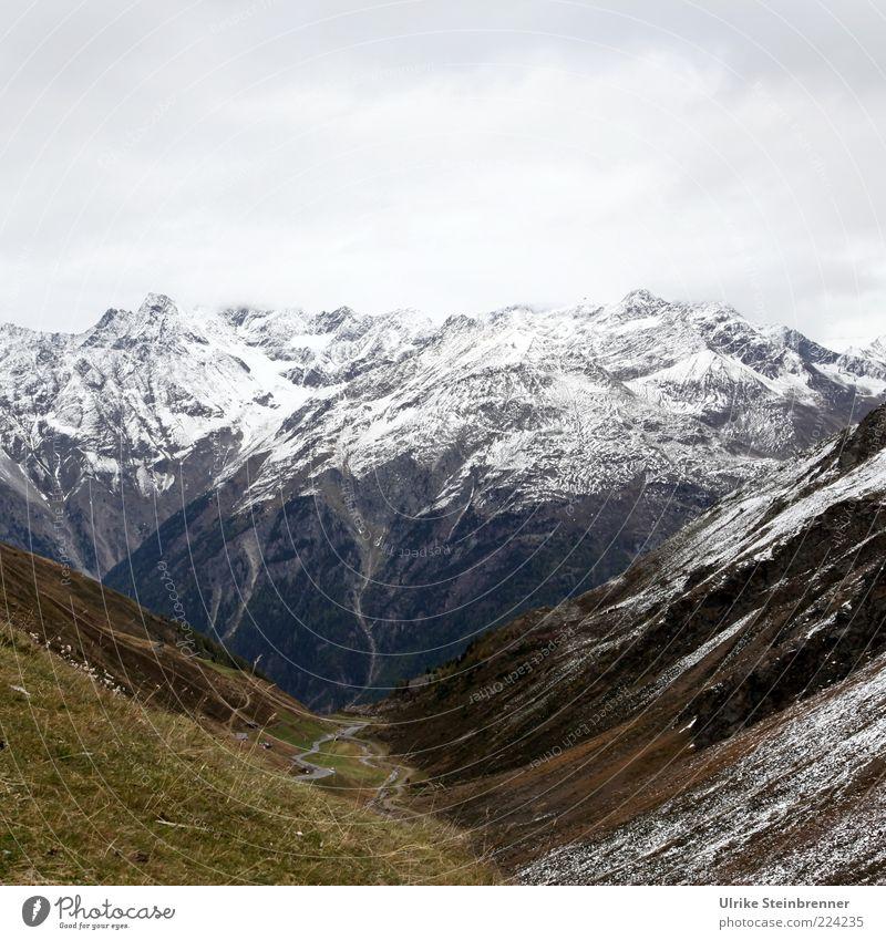 Herbst im Ötziland Natur Landschaft Eis Frost Schnee Gras Felsen Alpen Berge u. Gebirge Ötztaler Alpen Rettenbachgletscher Gipfel Schneebedeckte Gipfel
