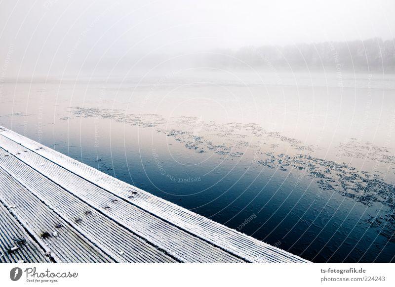 Stilles Ufer Umwelt Natur Landschaft Urelemente Luft Wasser Winter Nebel Eis Frost Seeufer Flussufer kalt blau weiß Steg Anlegestelle Nebelbank Nebelwand