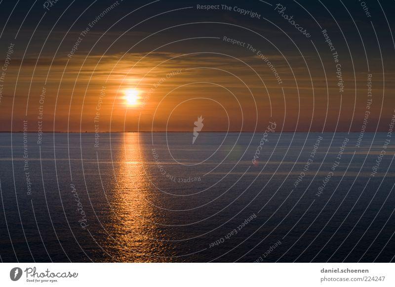 na dann: Frohe Weihnachten !! Ferien & Urlaub & Reisen Schönes Wetter Meer gelb Beginn Erholung Horizont Zukunft Textfreiraum oben Textfreiraum unten Abend