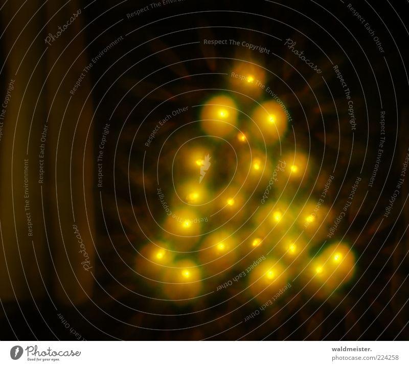 Extrafokale Unschärfekreise Weihnachten & Advent Baum gelb Weihnachtsbaum bizarr Vorfreude abstrakt Weihnachtsdekoration Lichterkette Nachtaufnahme Lichteffekt