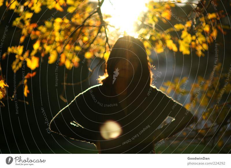 Der Sonne trotzen V Mensch Natur Jugendliche Baum schön Pflanze Blatt feminin Herbst Gefühle Umwelt träumen Stimmung Wärme hell Park