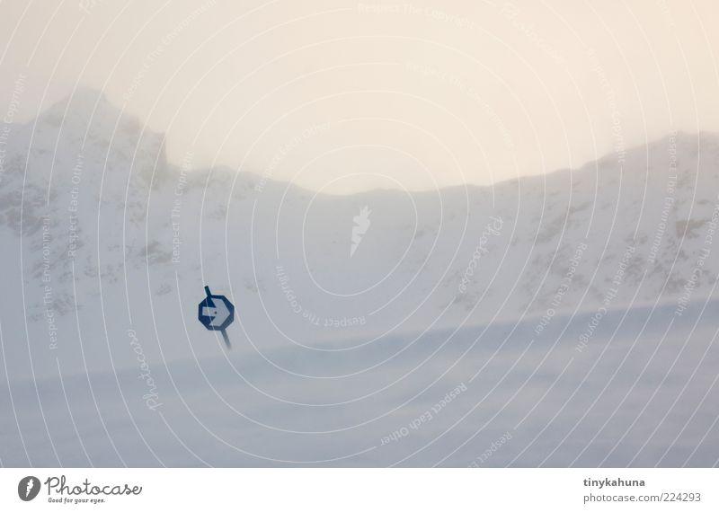 wegweisend Winter Schnee Berge u. Gebirge Skipiste schlechtes Wetter Sturm Eis Frost Alpen kalt blau grau weiß Außenaufnahme Menschenleer Textfreiraum rechts