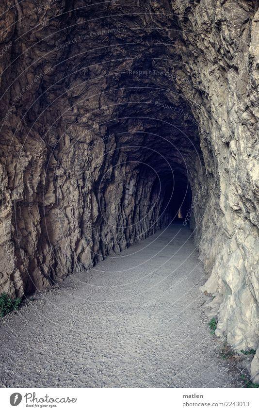spannend Tunnel dunkel gruselig lang braun grau Biegung Lichtblick Lichterscheinung Farbfoto Gedeckte Farben Außenaufnahme Menschenleer Textfreiraum links