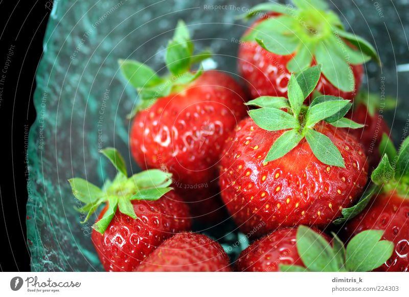 Erdbeeren Lebensmittel Frucht Dessert Ernährung Gesundheit Natur Blatt frisch lecker natürlich saftig rot schwarz Farbe Hintergrundbild farbenfroh essbar