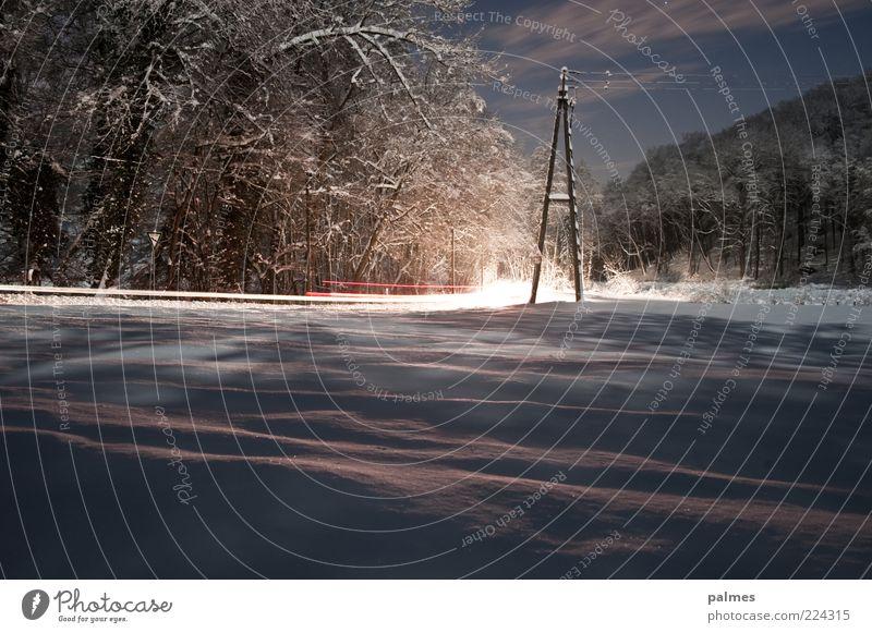 Wintergeist Vol1 Umwelt Natur Landschaft Wolken Nachthimmel Schnee Baum Gefühle Stimmung Telefonmast Farbfoto Gedeckte Farben Außenaufnahme Menschenleer