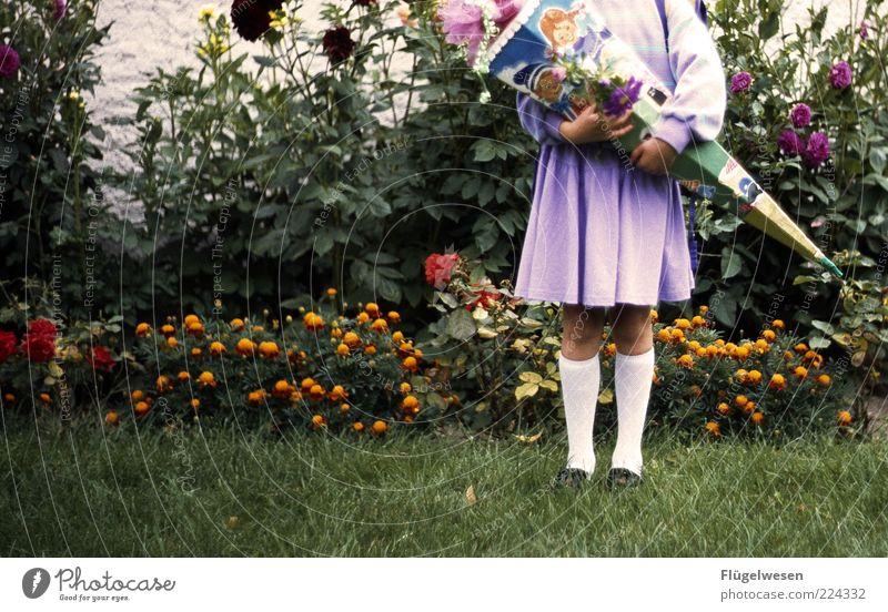 1. Schultag Kind Pflanze schön Blume Freude Mädchen Wiese Glück Schule stehen lernen violett Bildung Schüler Rock Vorfreude